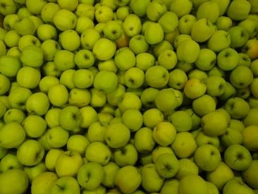 Pomme Golden Leratess