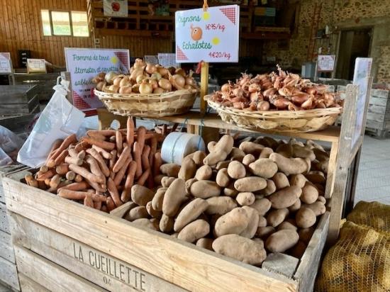 légumes pomme de terre carotte oignon echalote
